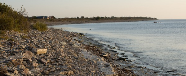Knisa mosse Stranden m fiskaren