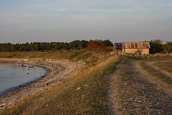 Kvallssol vid Knisa mosse