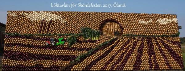 Loktavlan Oland 2017 2017 09 24_0581