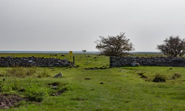 Norra Lunden vy mot Schaferiangarna