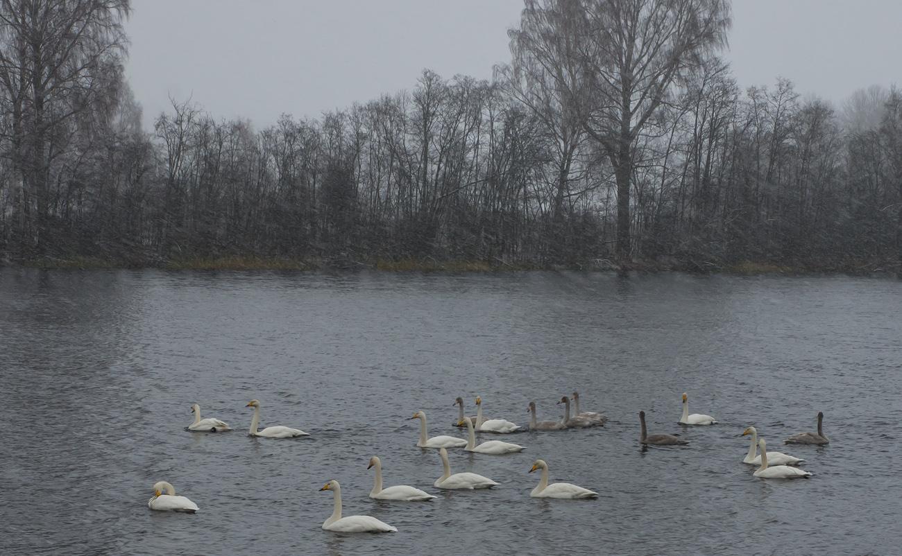 Snöoväder kanotstdn Torsång2