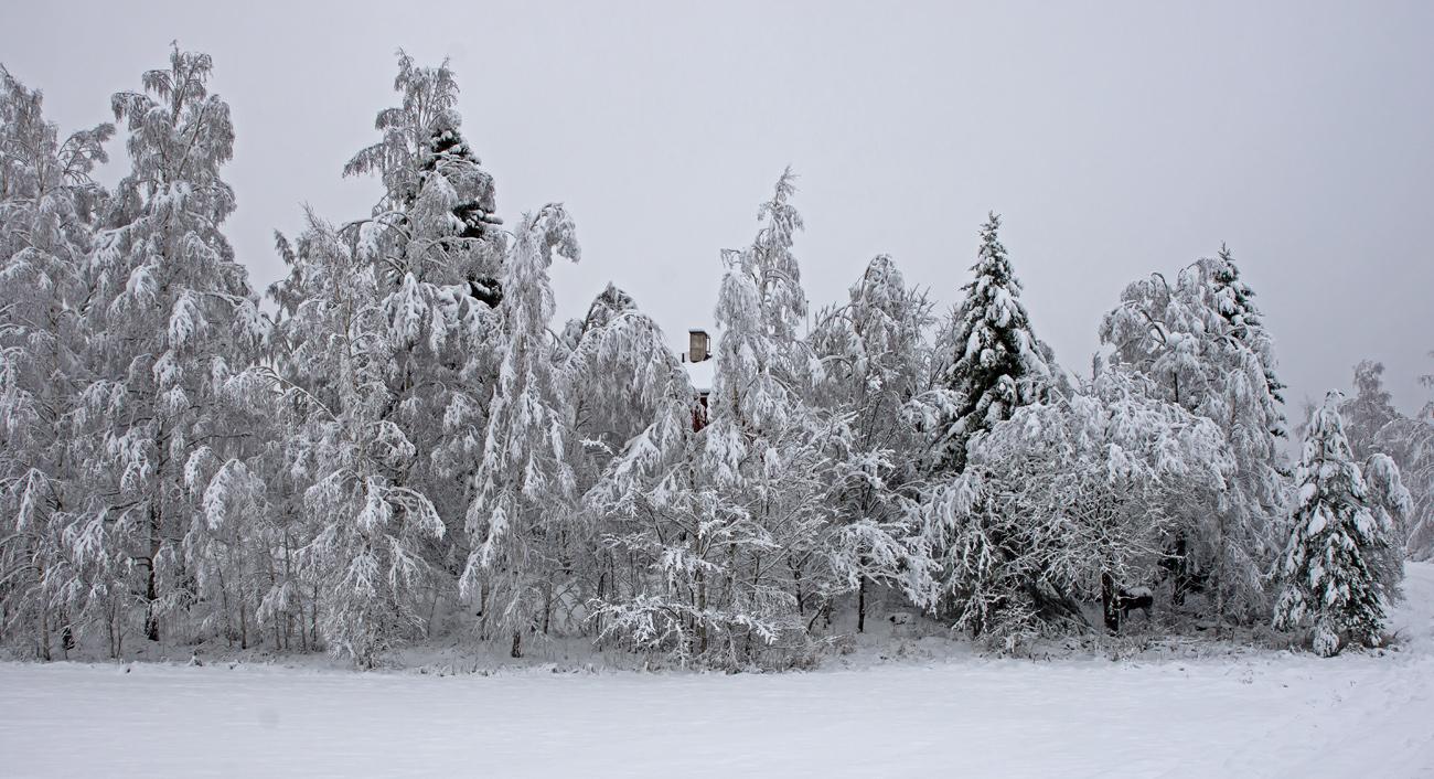 Vinter Dberg