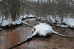 fdalen-lagvatten