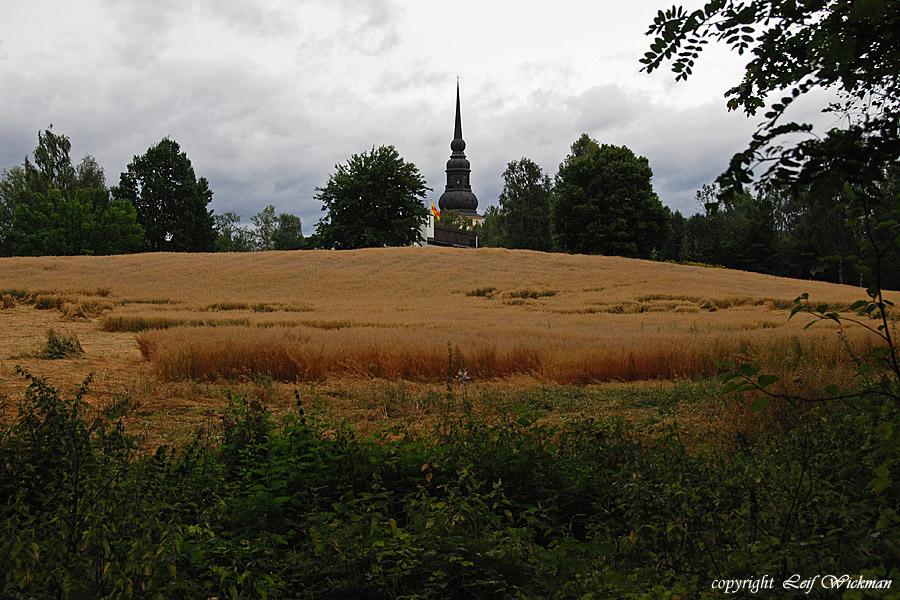 vy-wallingarden-2008-08-17_1089.jpg