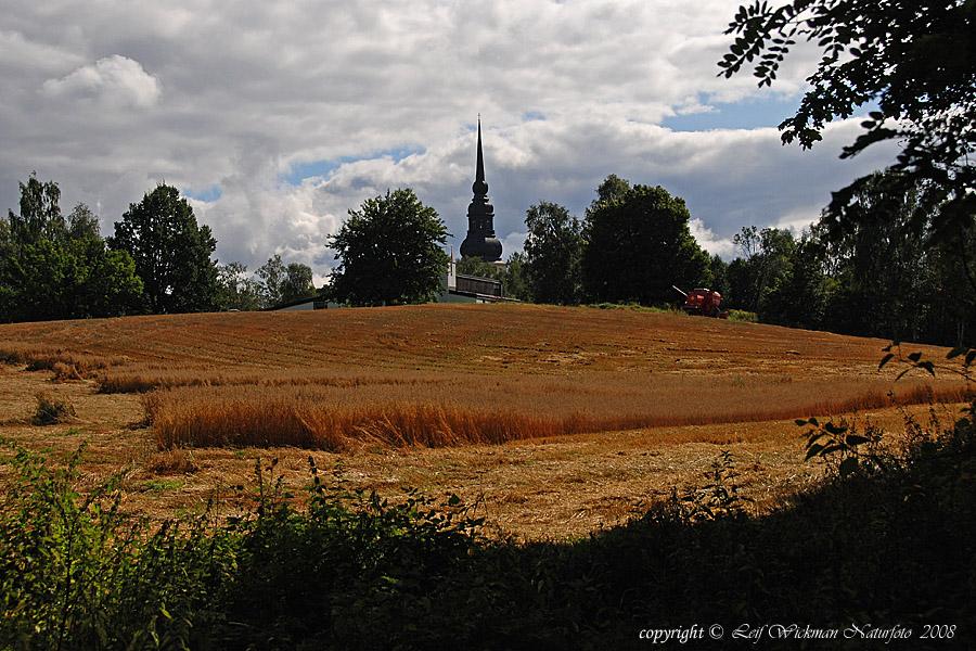 vy-mot-wallingarden-o-kyrkan-2008-08-25_1294.jpg